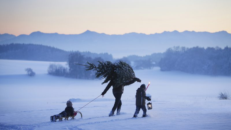 Das wertvollste Weihnachtsgeschenk ist verschenkte Zeit. Wie wäre es denn mit gemeinsamen Weihnachtsbaumschlagen in der Schonung. (Foto: Getty Images)
